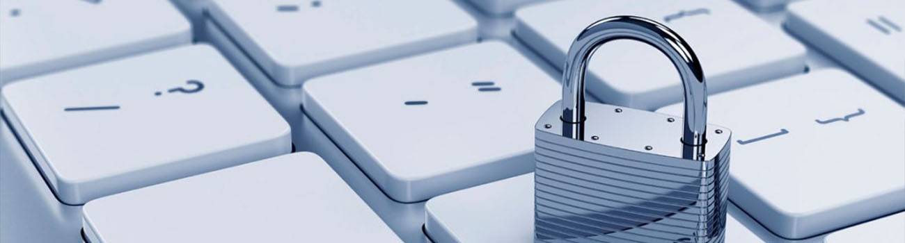 Cocalis Partners Privacy Policy